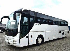 Автобус MAN на 50 мест